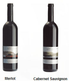 Galil Wine Merlot and Cabernet